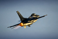 lockheed martin f-16cm fighting falcon